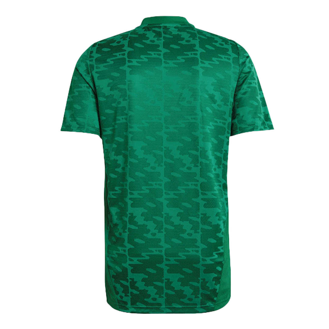 Algeria Authentic Jersey 2021 By Nike